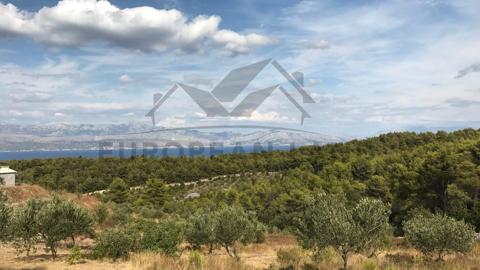 Land, 5000 m2, For Sale, Sutivan