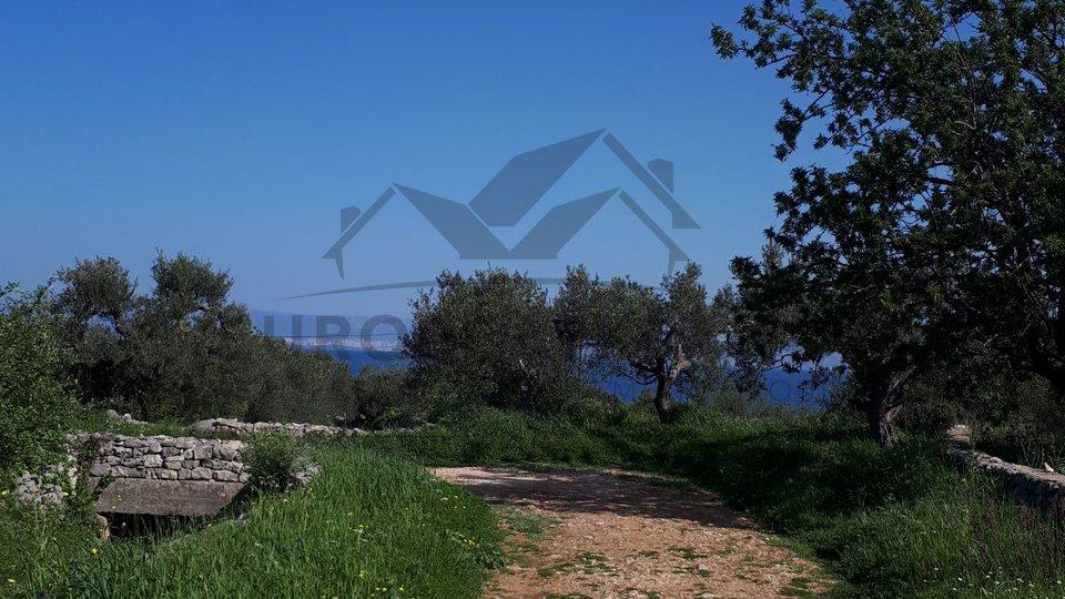 Grundstück, 1718 m2, Verkauf, Mirca