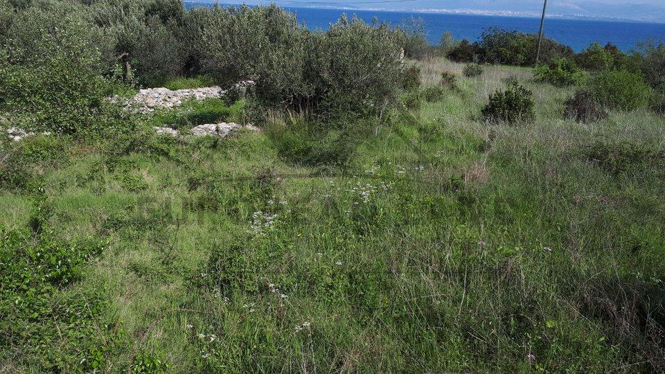 Building plot in Mirca
