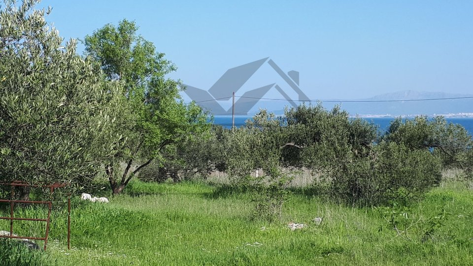 Terreno, 10738 m2, Vendita, Mirca