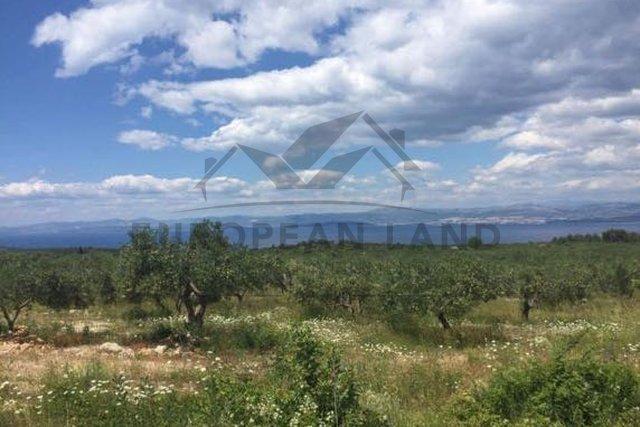 Terreno, 22806 m2, Vendita, Sutivan