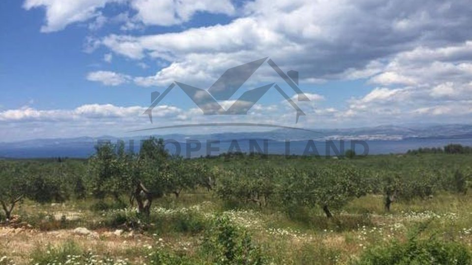Agricultural land with possibility of construction-Sutivan
