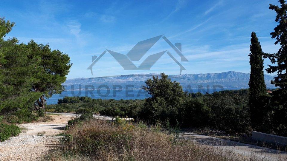 Landwirtschaftliche Fläche - in Mirca