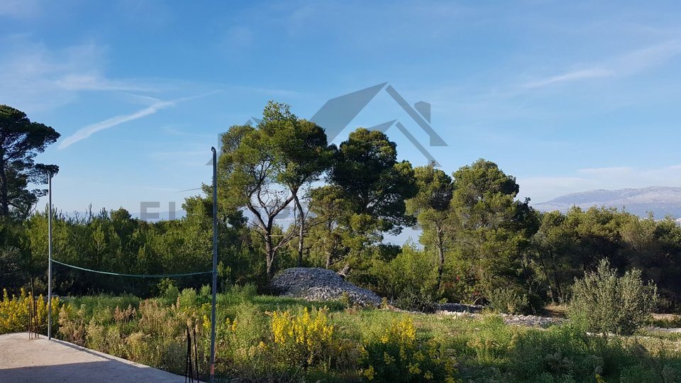 Poljoprivredno zemljište  s kućom – Mirca