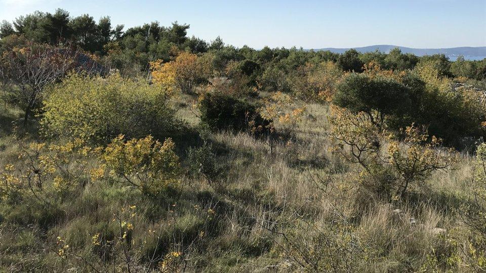Poljoprivredno zemljište u Sutivanu