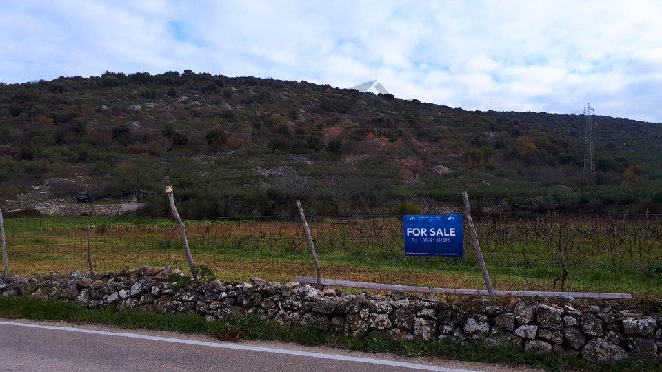 Landwirtschaftliche Fläche – in Nerežišća
