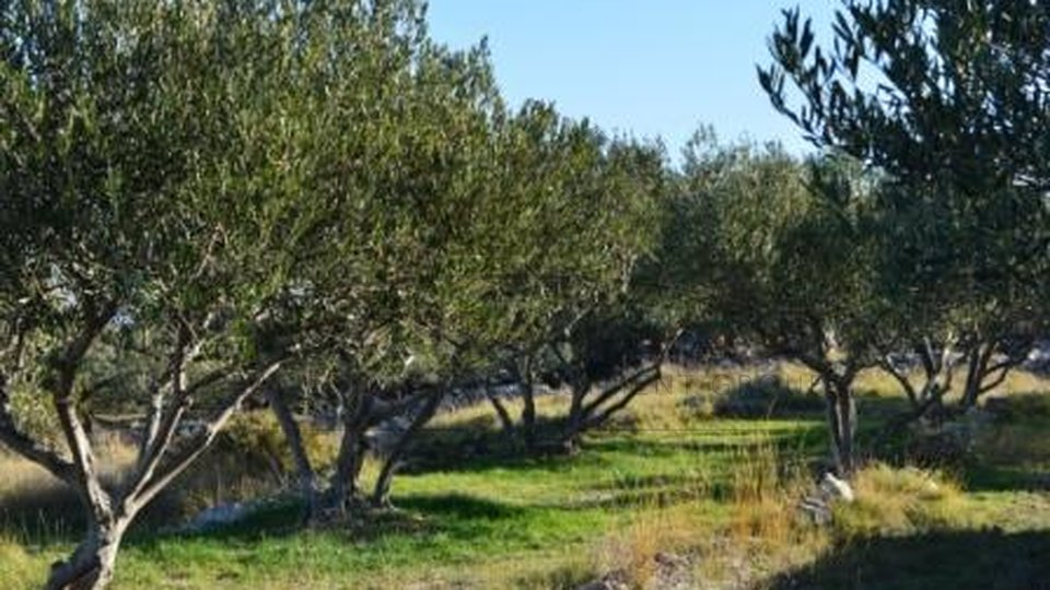 Land, 9185 m2, For Sale, Supetar