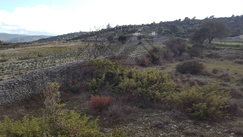 Agricultural land in Škrip