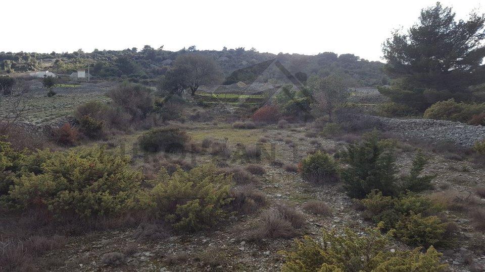 Poljoprivredno zemljište u Škripu