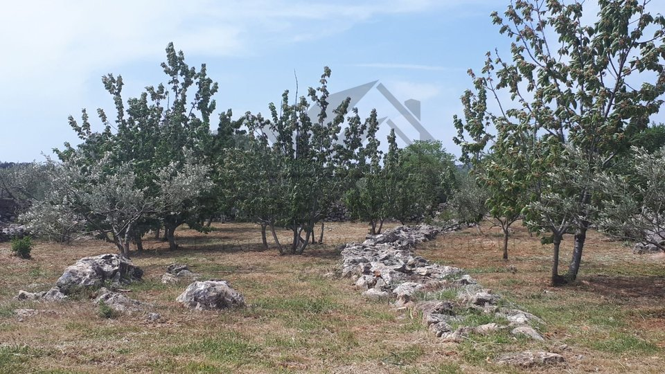 Agricultural land in Donji Humac