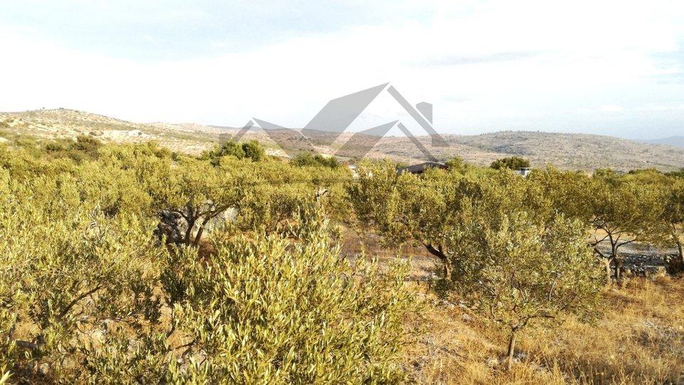 Grundstück, 3000 m2, Verkauf, Milna